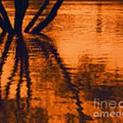 Reflectivity Art Print