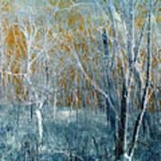 Refreshing Breeze Art Print by Tom Druin