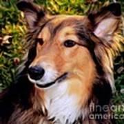 Regal Shelter Dog Art Print