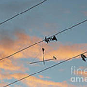 Remains Of Kite On The Electric Power Line Art Print