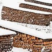 Renewable Heat Source Firewood Stacked In Winter Art Print