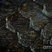 Reptile Skin Texture Art Print