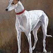 Rescued Racer Art Print by Charlotte Yealey