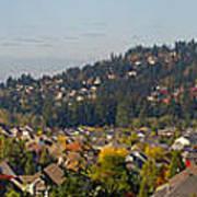 Residential Homes In Suburban North America Art Print