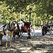 Rest Stop - Central Park Art Print