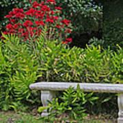 Restful Park Bench Art Print