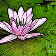 Retro Water Lilly Print by Bob Christopher