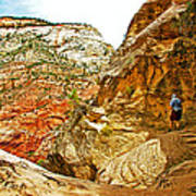 Return Trip On Hidden Canyon Trail In Zion National Park-utah Art Print