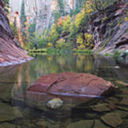 Revisited Art Print by Peter Coskun