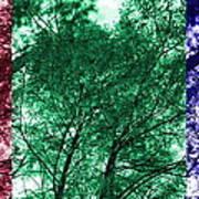 Rgb Trees Art Print