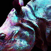 Rhino 1 - Rhinoceros Art Prints Art Print by Sharon Cummings