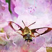 Rhododendron Dreams Art Print
