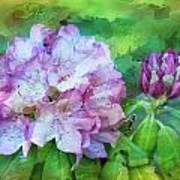 Rhododendrum Art Print
