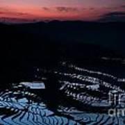 Rice Terrace After Sunset Art Print