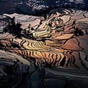 Rice Terrace Field Of Yuan Yang Art Print