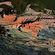 Rice Terrace Art Print