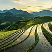 Rice Terraces At Mu Cang Chai, Vietnam Art Print