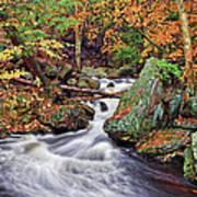 Ricketts Glen Falls Art Print