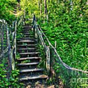 Rickety Stairs Art Print
