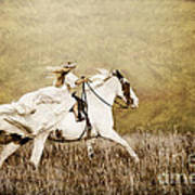 Ride Like The Wind Art Print
