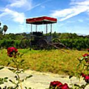 Rideau Vineyards Solvang California Art Print