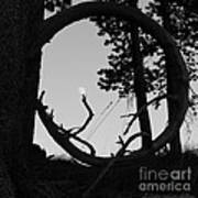 Ring Around The Moon Art Print