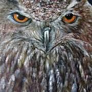 Rings Of Fire, Owl Art Print