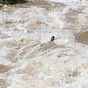 Rio Grande Kayaking Art Print