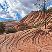 Rippled Rock At Zion National Park Art Print