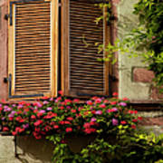 Riquewihr Window Art Print