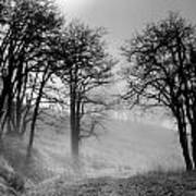 Rising Mists In The Bald Hills Art Print
