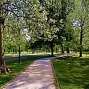 Ritter Park Paths Art Print