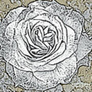 Ritzy Rose With Ink And Taupe Background Art Print
