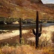 River And Cactus Art Print