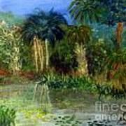 River At Riverbend Park In Jupiter Florida Art Print
