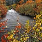 River Color Art Print