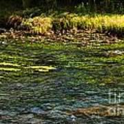 River Colors Art Print