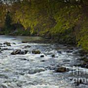 River Don Art Print
