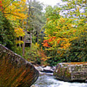 River House In The Fall Art Print
