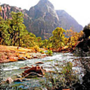 River In Zion National Park Art Print
