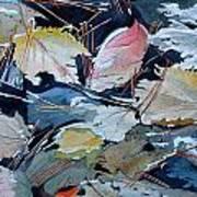 River Leaves Art Print