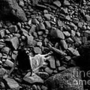 River Of The Stones  Art Print