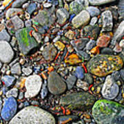 River Rocks 22 Art Print