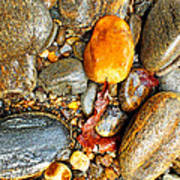 River Rocks 8 Art Print