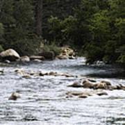 River Runs Through It Art Print