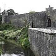 River Suir And Cahir Castle Art Print