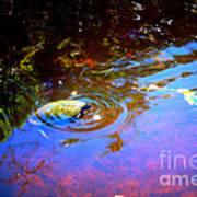 River Turtle Art Print