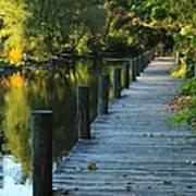 River Walk In Traverse City Michigan Print by Terri Gostola