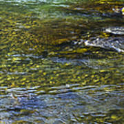 River Water 2 Art Print