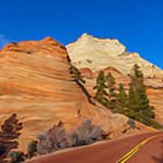 Road Through Zion Np Art Print